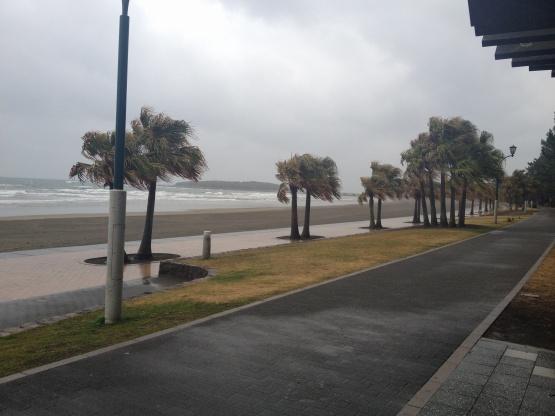 2014年2月の海